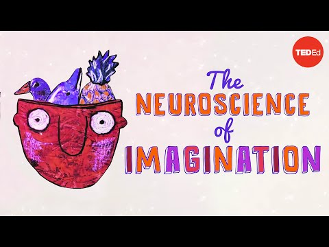 The neuroscience of imagination - Andrey Vyshedskiy