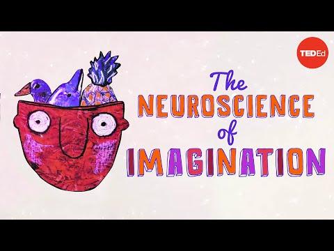 Video image: The neuroscience of imagination - Andrey Vyshedskiy