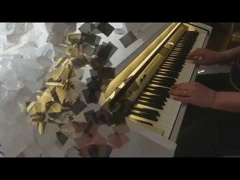 Thomann Digitalpiano DP 95, auspacken und ausprobieren - Soundbeispiele