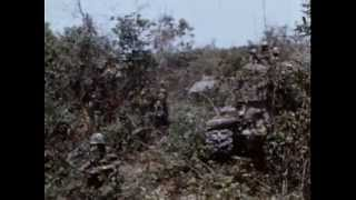 Vietnam War- Search and Destroy Mission