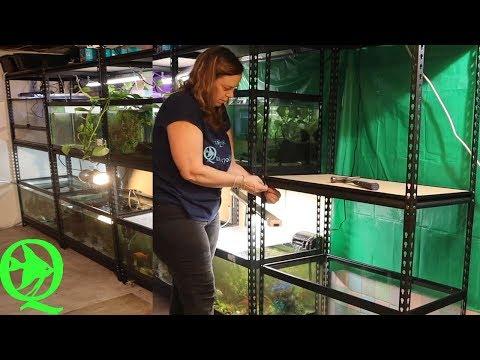 40 Breeder Aquarium Stand For Under $80