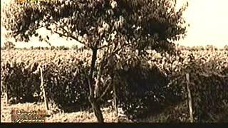 Մուշեղ Իշխան - Գաղտնի թղթապանակ - Երկիր Մեդիա