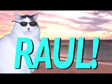 Happy Birthday Raul Epic Cat Happy Birthday Song Youtube