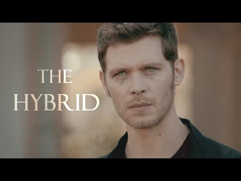 Klaus Mikaelson | The Hybrid
