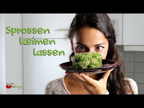 Alfalfa gegen Bluthochdruck
