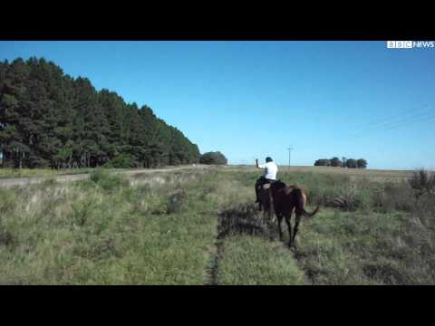 An interview with BBC NEWS about traveling on a horse in Uruguay, not a bike