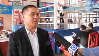 В зале центрального стадиона имени Кажимукана стартовал чемпионат области по боксу