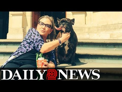 Carrie Fisher's Dog Gary Will Not Live With Billie Lourd