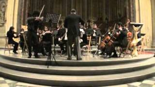 Peteris Vasks -Concerto For Violin And String Orchestra (Distant Light)