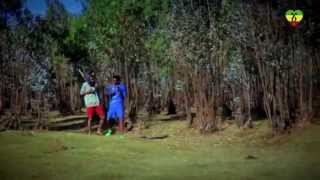 Ethiopia - Alos Band - Geba Telegnalech - (Official Music Video) Ethiopian Music
