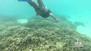 Explore American Samoa