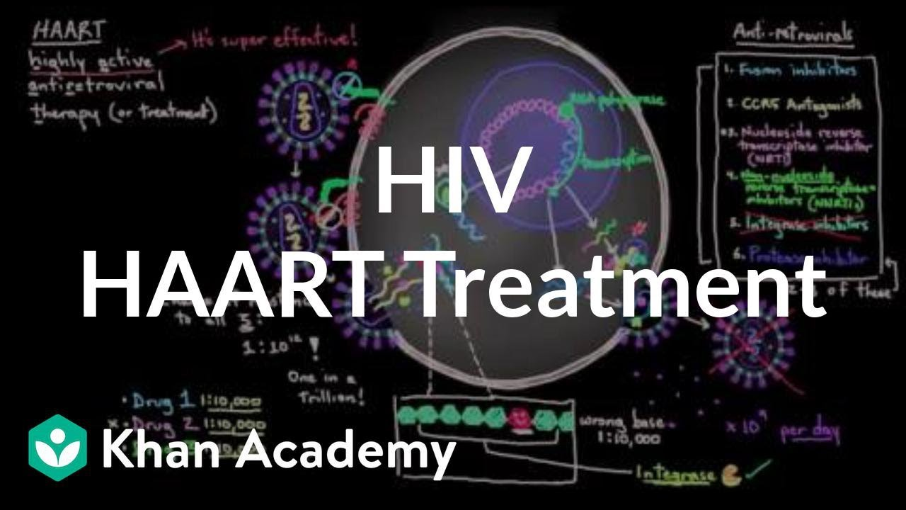 Haart Treatment For Hiv Who What Why When And How