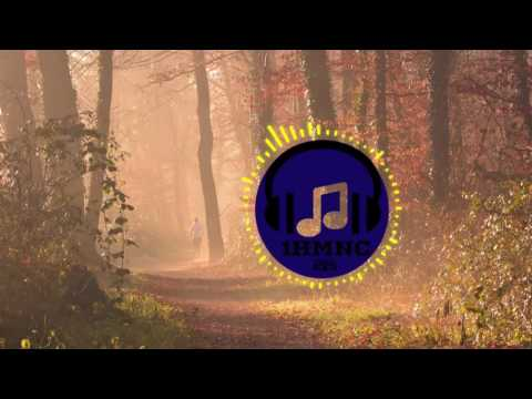 OLWIK feat. Johnning - This Life (Janji Remix) [Melodic House] Extended Version