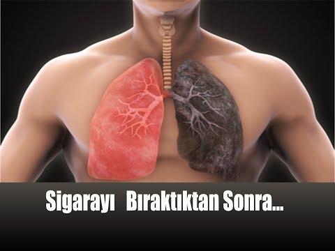 Sigarayı Bırakanların Vücutlarında Neler Oluyor? / Sigarayı Bıraktıktan Sonra Vü