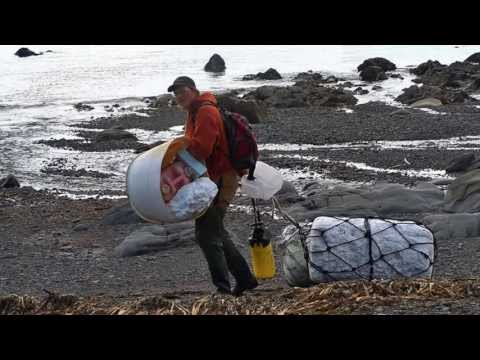 Tsunami Debris Hits California