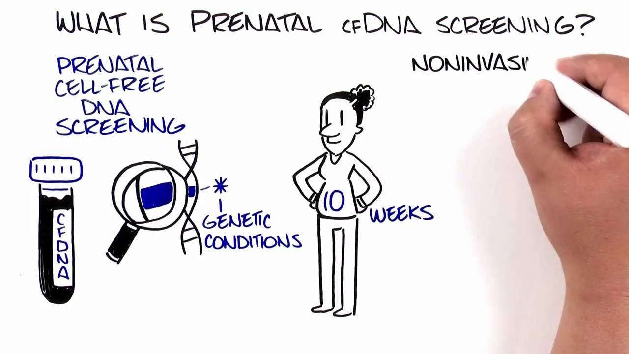 Prenatal Cell Free Dna Screening Cfdna Screening Youtube