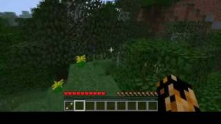 minecraft: comment bien configurer les options pour ne pas buger