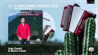 Ivan David Villazon - Canciones Perfectas