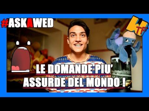 LE DOMANDE PIU' ASSURDE DEL MONDO!   #AskAwed™