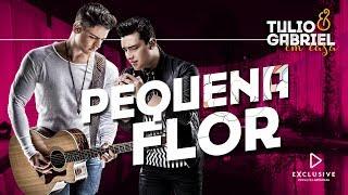 Baixar Tulio e Gabriel - Pequena Flor (DVD Em Casa)