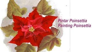 Pintar Poinsetia , flor de pascua . Painting poinsettia one stroke