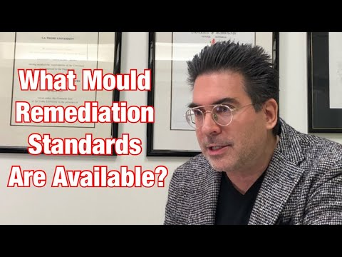 what-mould-remediation-standards-are-available?