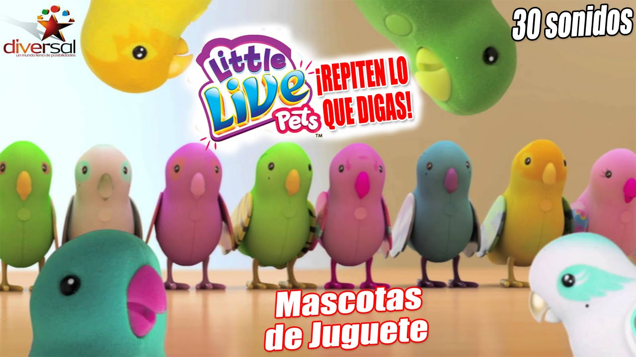 Periquitos parlanchines little live pets mascotas de for Espejo que habla juguete