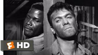 The Defiant Ones (1958) - I'm Lettin' Ya Loose Scene (6/9) | Movieclips