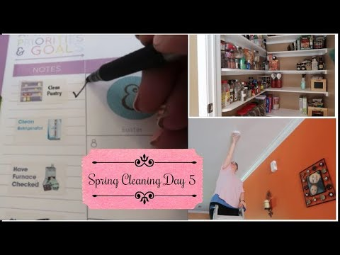 Spring Cleaning mini series Day 6 | Colab with Mama Approved
