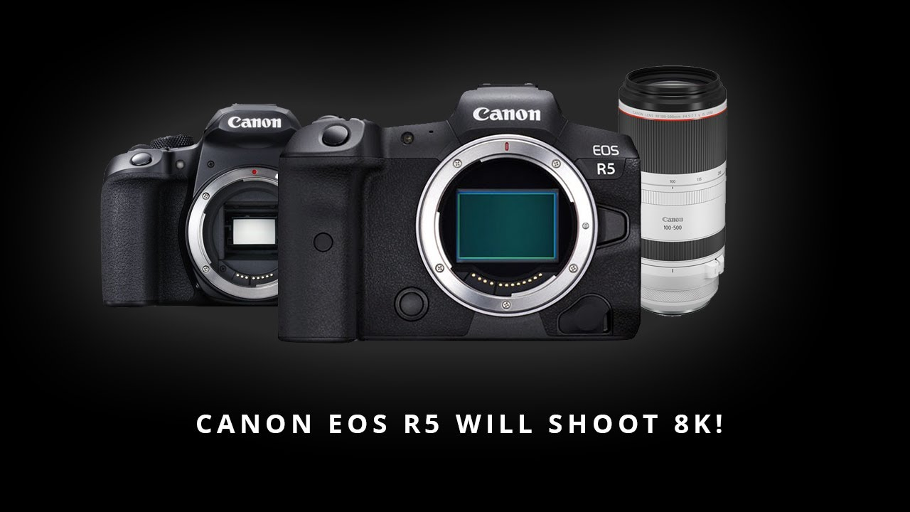 Image result for canon eos r5