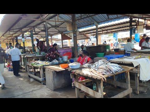 தூத்துக்குடி மீன் மார்க்கெட்   Thoothukudi Fish Market