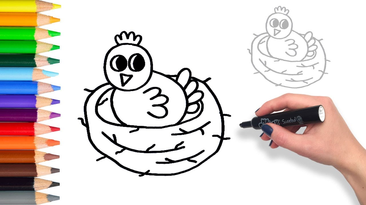 How To Draw Baby Bird In Nest