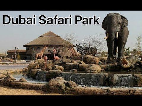 Dubai Safari Zoo Park Open 2019 دوباي سفاري زو بارك Youtube