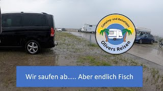 Camping: Wir saufen ab, aber endlich Fisch !!
