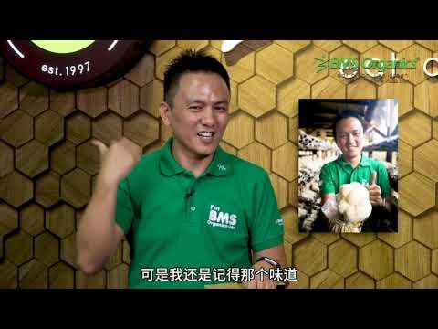 BMS Organics (蔬事) 总裁Mr Terry Lee 解说猴头菇精开发初中