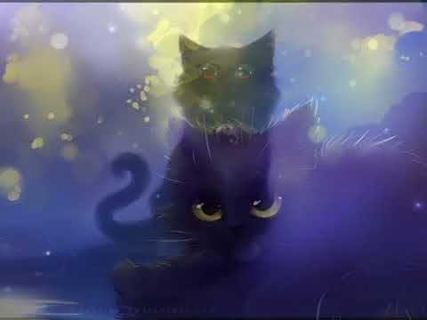 Картинки аниме кошек под музыку.