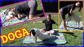 Doing Dog Yoga Pt. 2!