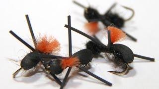 Fly Tying - Foam Ant