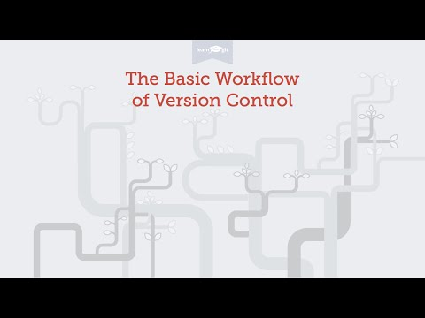 The Basic Workflow of Version Control [Learn Git Video Course]