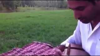 Rabab Mangay Music