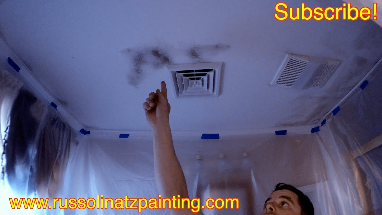Mold And Mildew Stains On A Shower Ceiling Part 1 Zinsser Killing Primer