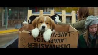 La Razón de estar contigo - Trailer Hablado al español streaming