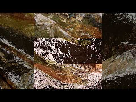 BACKWORDS - Arpoon