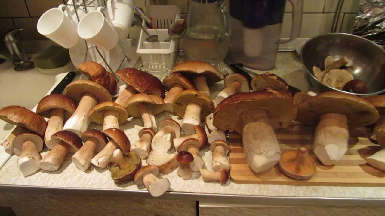 Юлия Высоцкая — Рисовые блинчики с сушеными грибами - YouTube