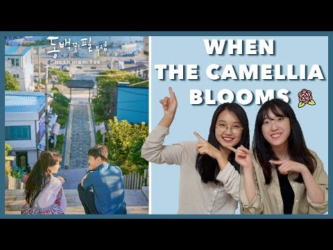 when-the-camellia-blooms-reaction-by-koreans-(ep-1-4)