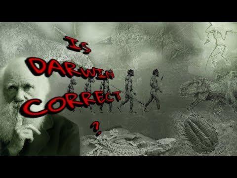 IS DARWIN CORRECT?