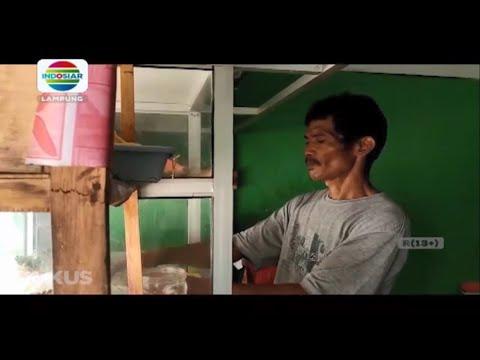 Soal Virus Corona, Pedagang Bakso Bandar Lampung Terkena Dampaknya
