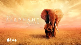 The Elephant Queen — Official Movie Trailer | Apple TV+