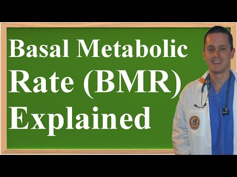 Basal Metabolic Rate (BMR) Explained