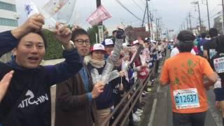 完走記 http://marathon-world.blogspot.jp/2016/11/2016.html 2016年10...